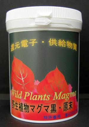 野生植物マグマ黒・原末 100g